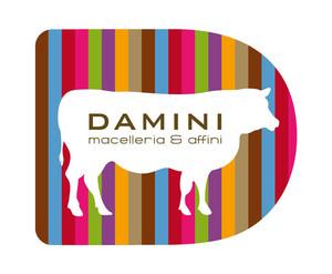 Brand identity DAMINI LOGO color
